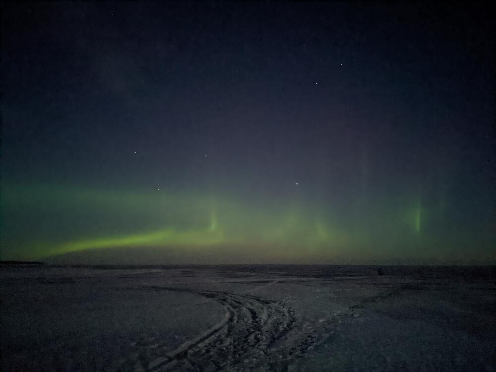 PXL_20210301_194612972.NIGHT.jpg