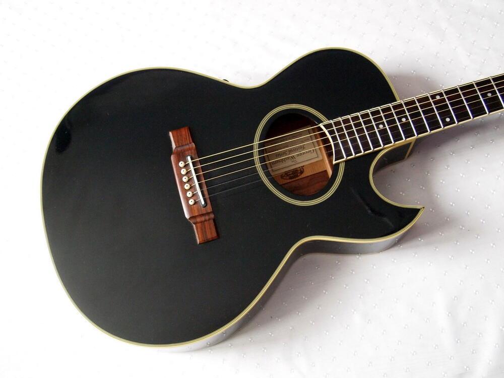 washburn-ea20-black.jpg